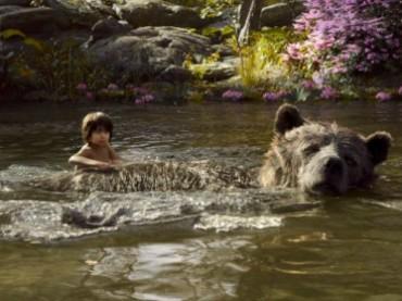 """India, trovata bimba """"Mowgli"""": viveva con un gruppo di scimmie"""